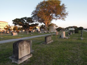 Woodlawn Cemetery at Dusk